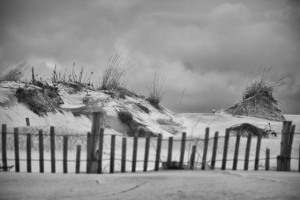 Post Hurrican Infrared Images of the dunes